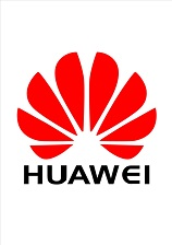 Seeds for the future - Huawei